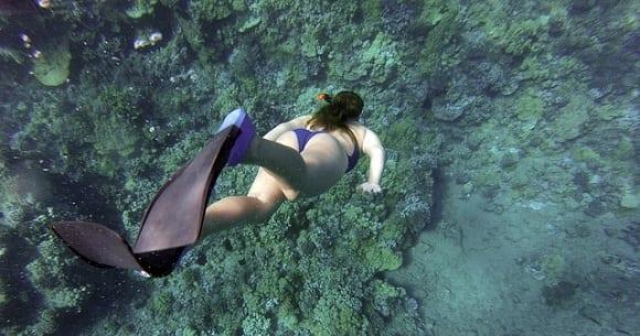 deportes de agua snorkel