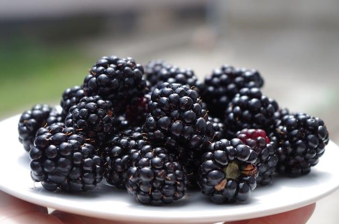 las moras y las frutas con menos azúcares