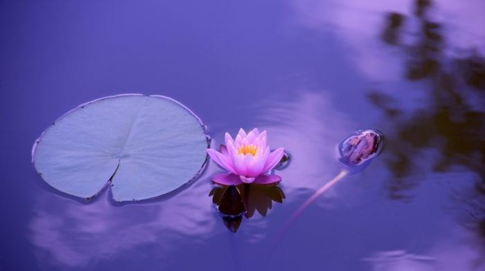 ¿Ayuda el Yoga al Crecimiento Espiritual?