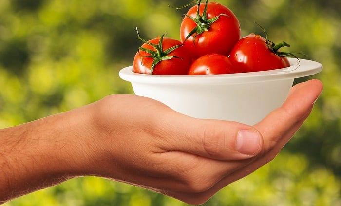 alimentos saludables para la compra