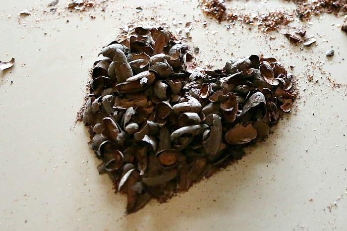 Nibs de cacao qué son