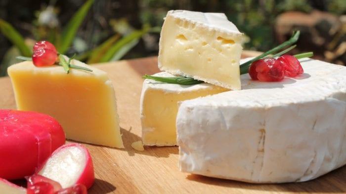 ¿El queso es proteína?