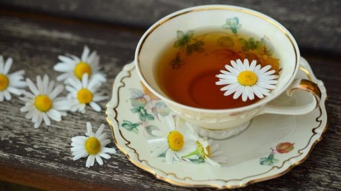 Té de moringa | ¿Para qué sirve? ¿Beneficios?