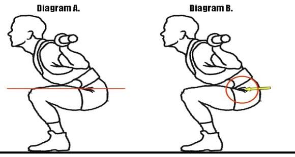 Miti del Bodybuilding