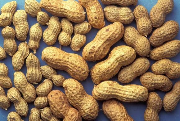 peanuts-815565_960_720