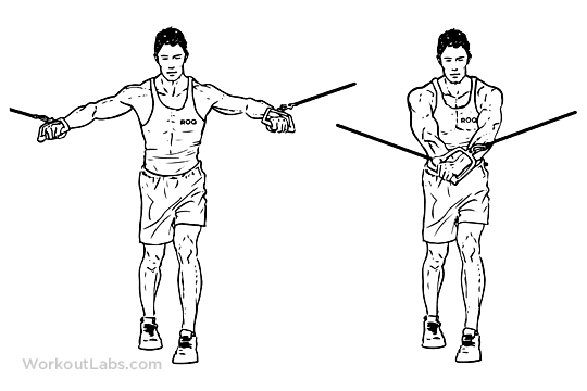 crossover ai cavi