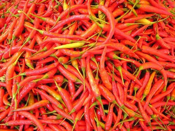 chilli-pepper-449_960_720