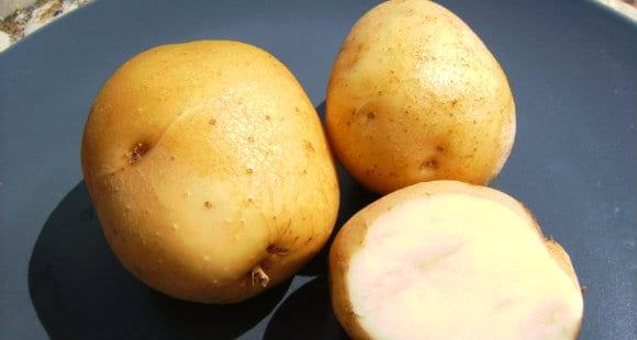 Il Potassio | A Cosa Serve? Fabbisogno E Equilibrio Omeostatico