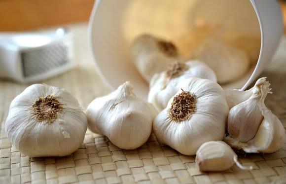 garlic-545223_960_720