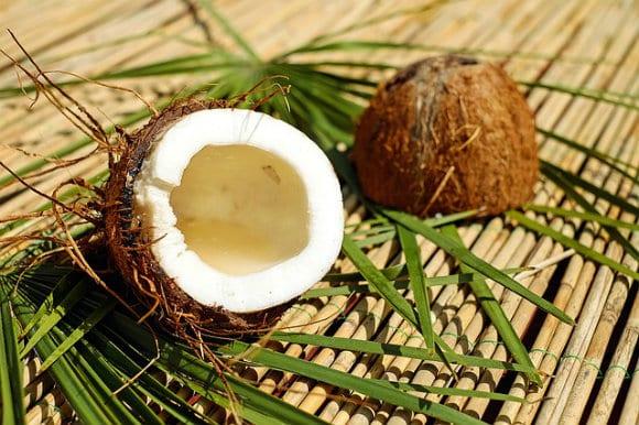 olio di cocco uso alimentare