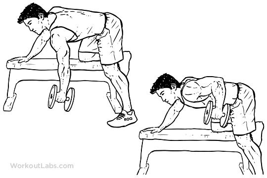 One Arm dumbbell Row | Come Si Esegue? Muscoli Coinvolti Ed Errori Comuni