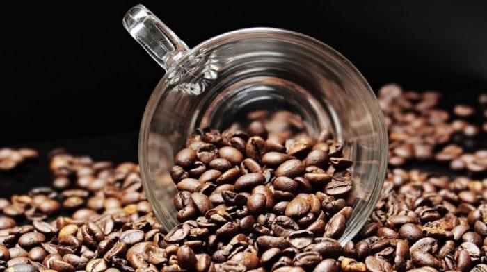 Tortarelle al caffè, cannella, mango e nocciole