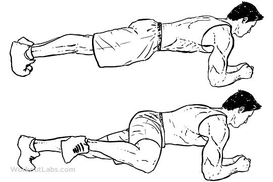 Spider plank | Come si esegue? Muscoli coinvolti, errori comuni
