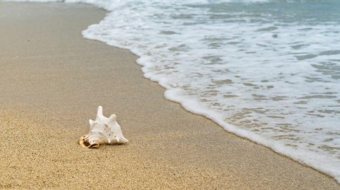 Correre Sulla Sabbia | Vantaggi E Svantaggi