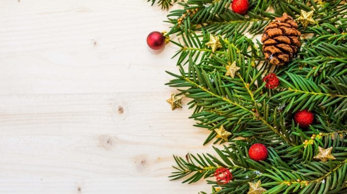 Giorno 12 | Come Sollevare Un Albero di Natale? Deadlift