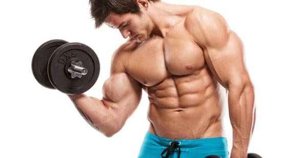melhores exercicios de triceps para hipertrofia