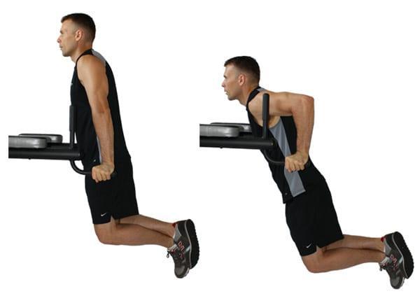 tríceps e bíceps