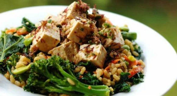 proteína vegetariana