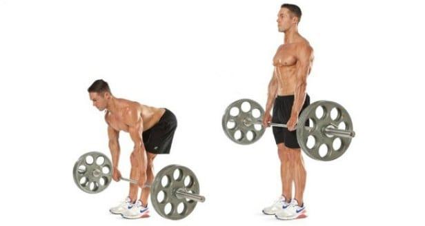 treino de pernas
