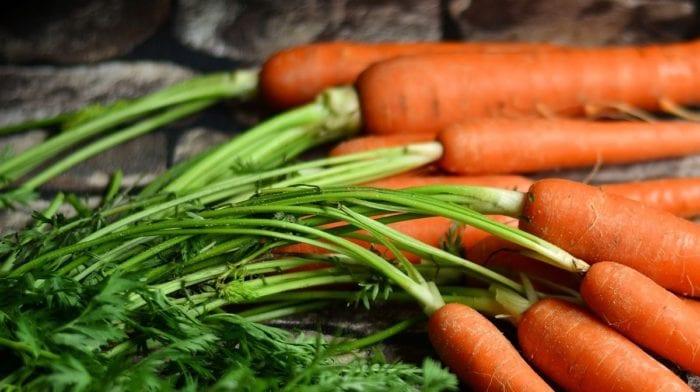 Legumes frescos ou congelados? | Quais são os benefícios?