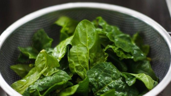Quais são os alimentos ricos em ferro de origem vegetal e animal