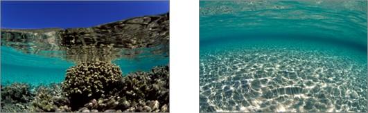Thalgo Sea
