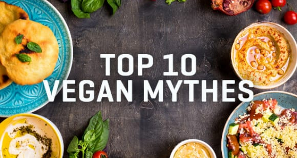 Top 10 Vegan Mythes | Infographic