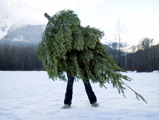 Hoe Deadlift je een kerstboom?