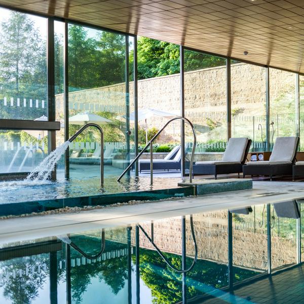Indoor pools overlooking the garden