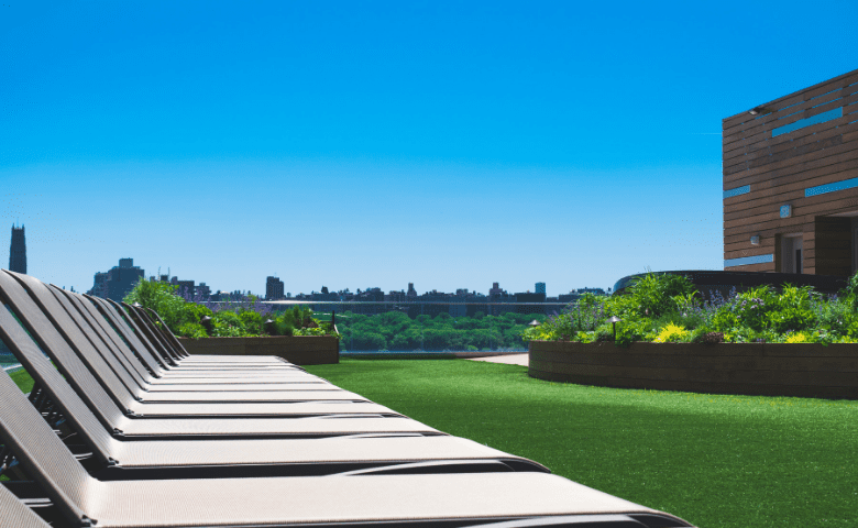 Rooftop garden overlooking New York City
