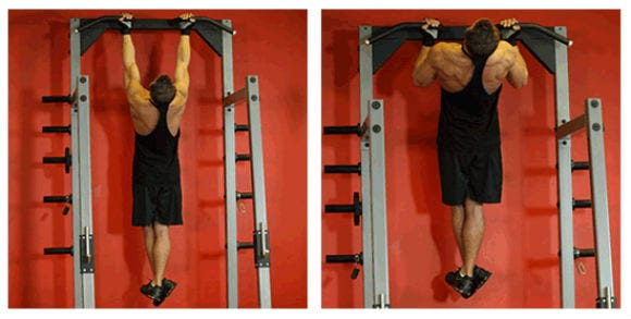 Top 5 Muscle Building Back Exercises