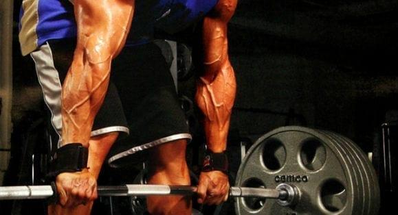Leucine for bodybuilding