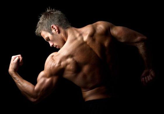 Shoulder Training: Best Weight Exercises For Shoulders