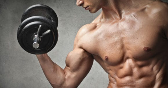 Best Protein Foods for Building Muscle