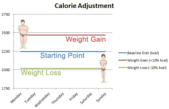 calorie adjustment bulk and cut