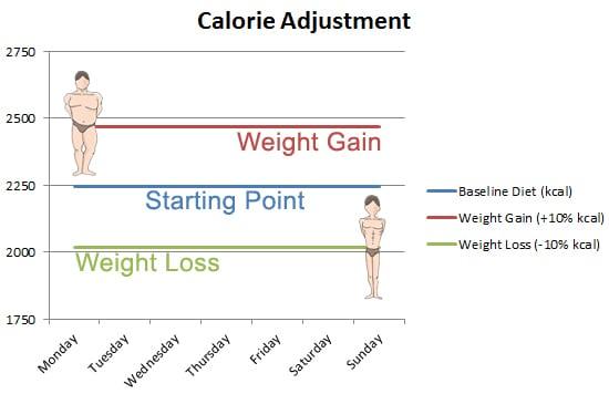 calorie adjustment bulk and cut
