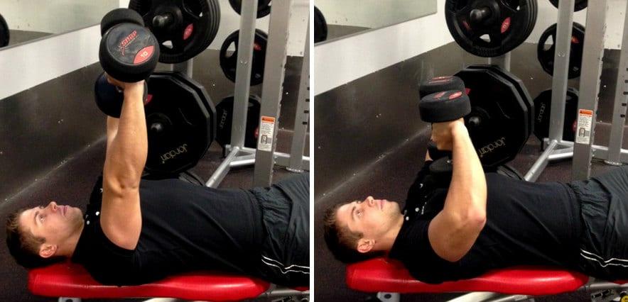 tate press biceps exercises workout