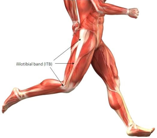 Iliotibial Band anatomy