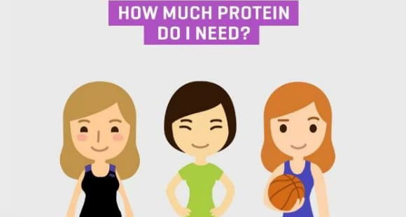 Do Women Need Protein | Benefits & Myths | An Infographic