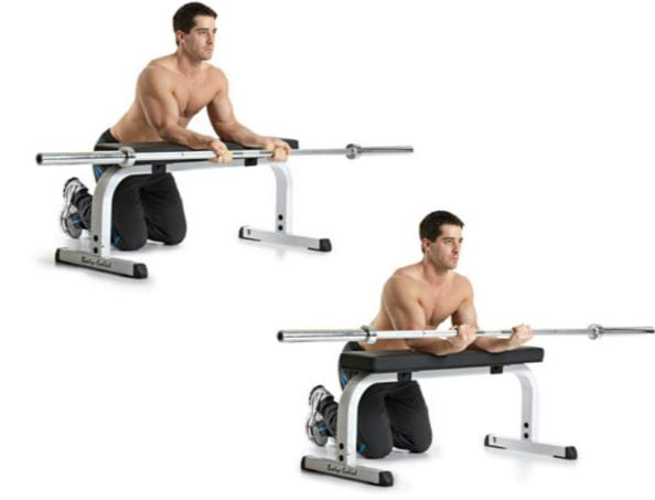 barbell forearm exercise wrist curl