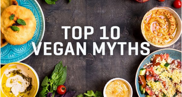 Top 10 Vegan Myths | An Infographic