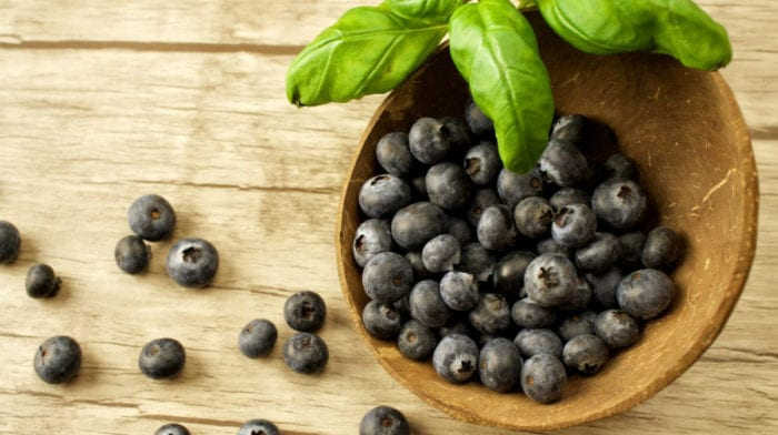 What Is Maqui Berry Powder? | Benefits & Usage