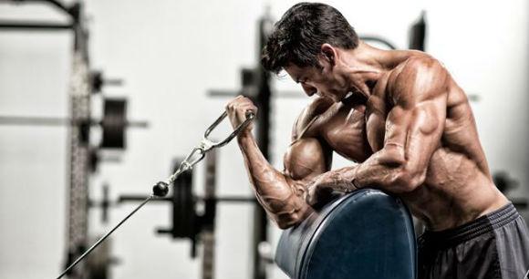Bicepsz edzés - preacher gyakorlat
