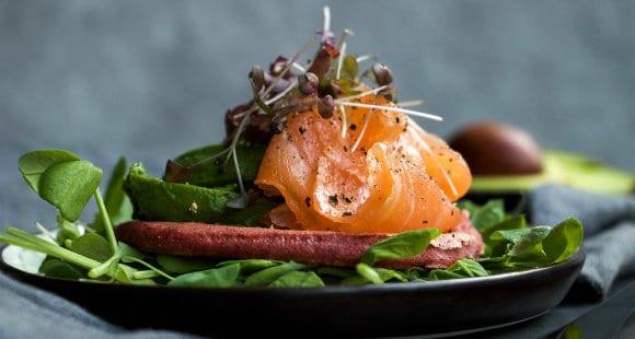 salmon - lazac