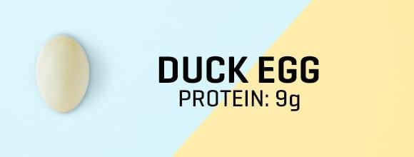 Kacsatojás fehérjetartalma