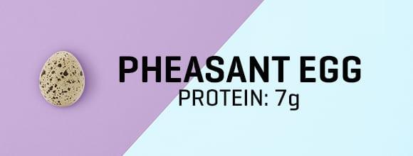 Fácántojás fehérjetartalma