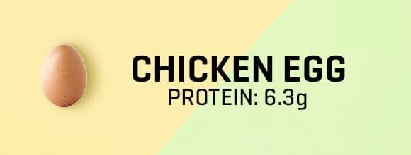 Tyúktojás fehérjetartalma