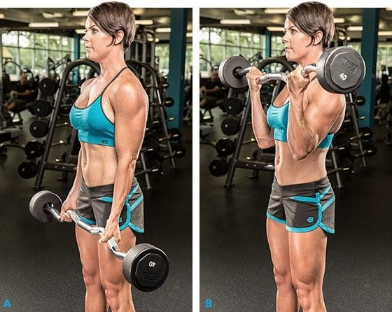 bicepsz edzése