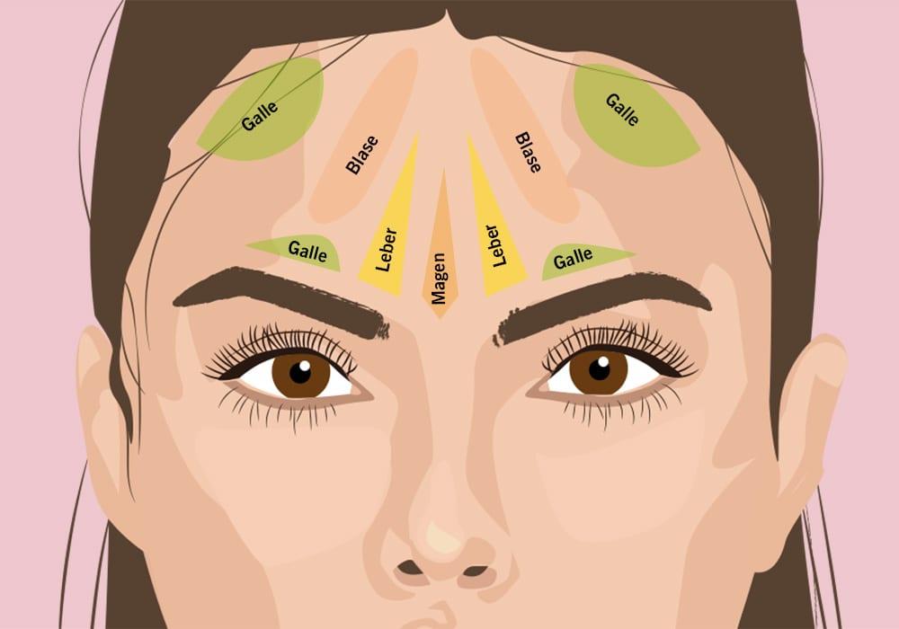 face-mapping-pickel-im-gesicht-ursache-stirn