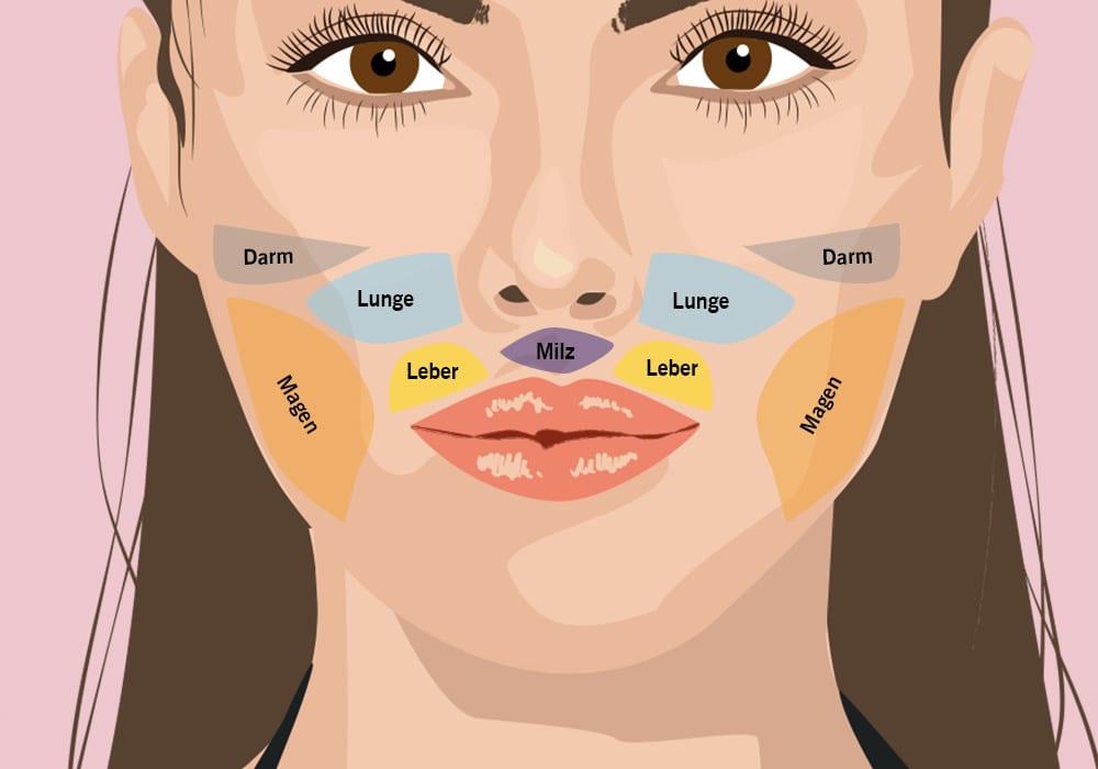 face-mapping-pickel-im-gesicht-ursache-wangen